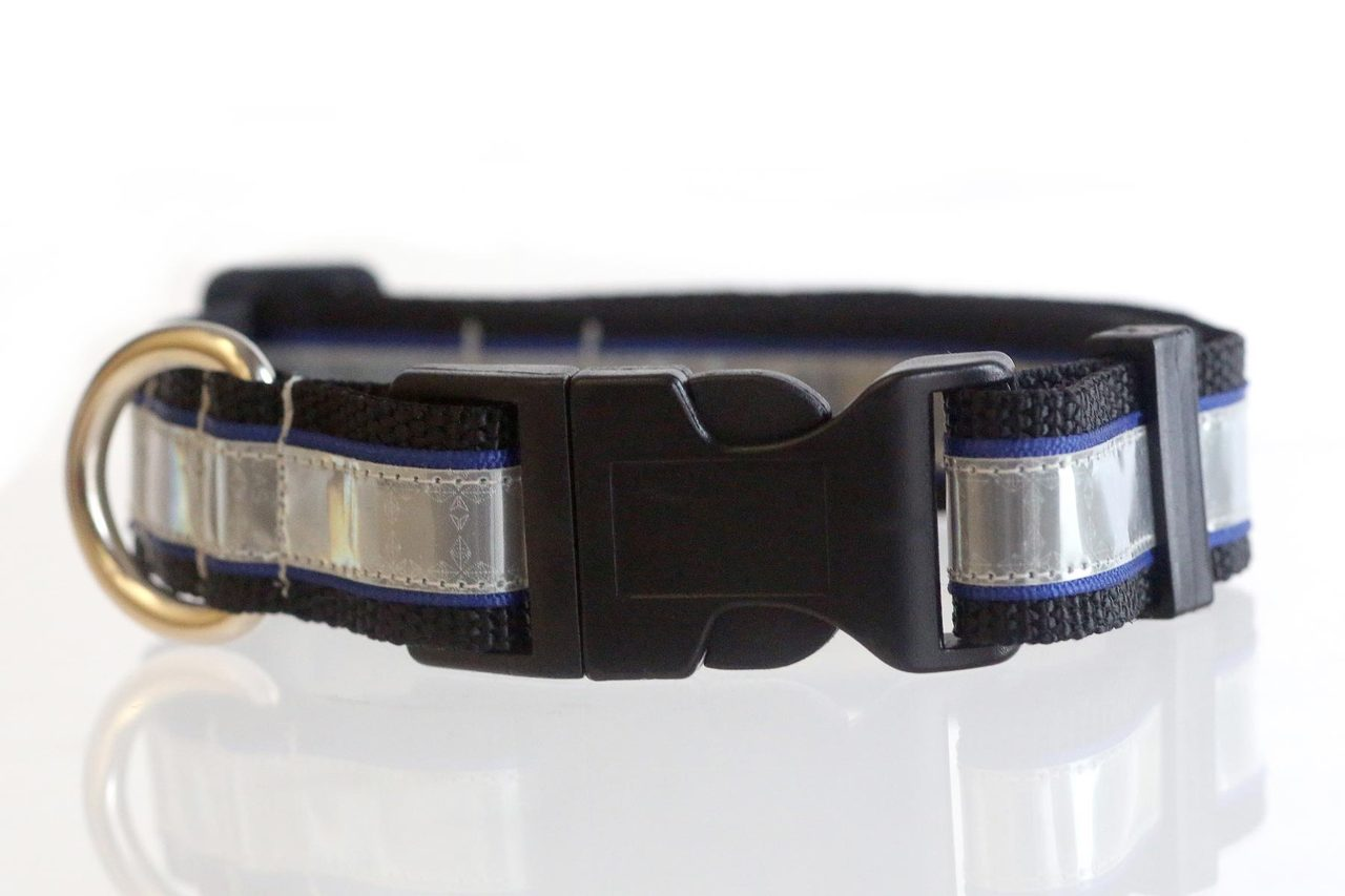 Illumidog Reflective Dog Collar  Medium (14-20 Inches)  Blue