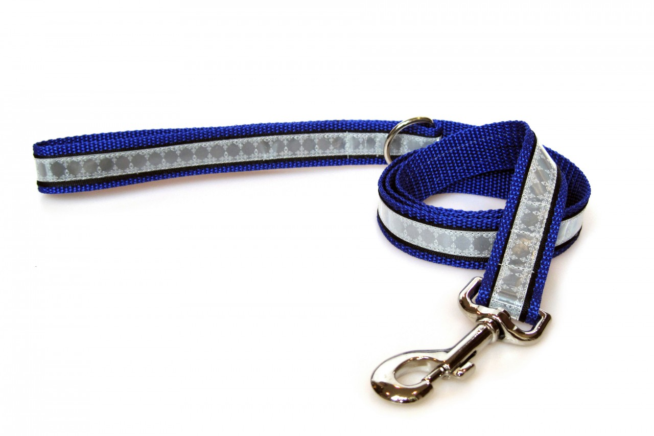 Illumidog Reflective Dog Leash  Blue