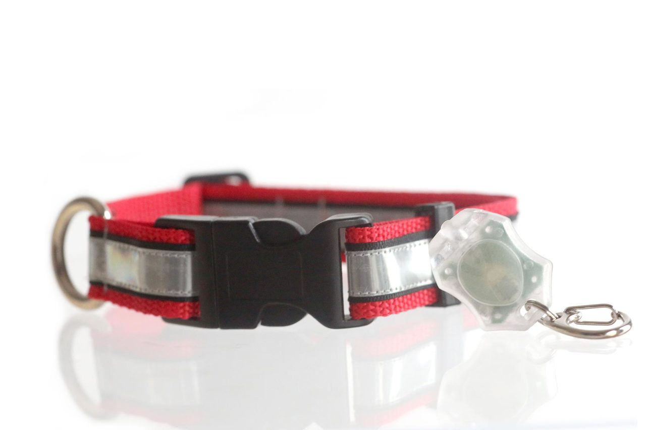 Illumidog Reflective Dog Collar / X-Light Micro Combo Set  Medium (14-20 Inches)  Red